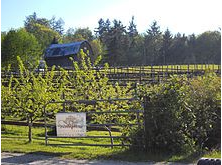 Vista D'oro winery in South Langley. Photo is of Vista D'oro sign, with small vines and a large barn in the background.